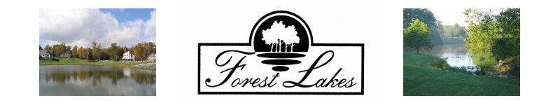 Forest Lakes POA, Forest, VA